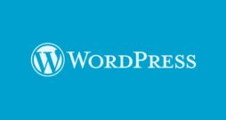 WordPress Down